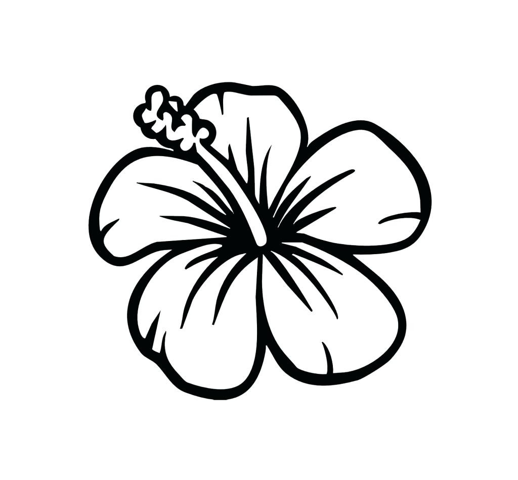Hawaiian flowers coloring pages 12 collection free coloring sheets hawaiian flowers coloring pages 12 collection izmirmasajfo