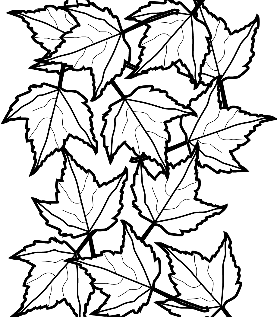 Fall Flowers Coloring Pages Printable | Free Coloring Sheets