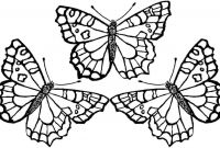 Monarch butterfly Coloring Pages - Innovative Coloring Picture A butterfly Pag Unknown Download