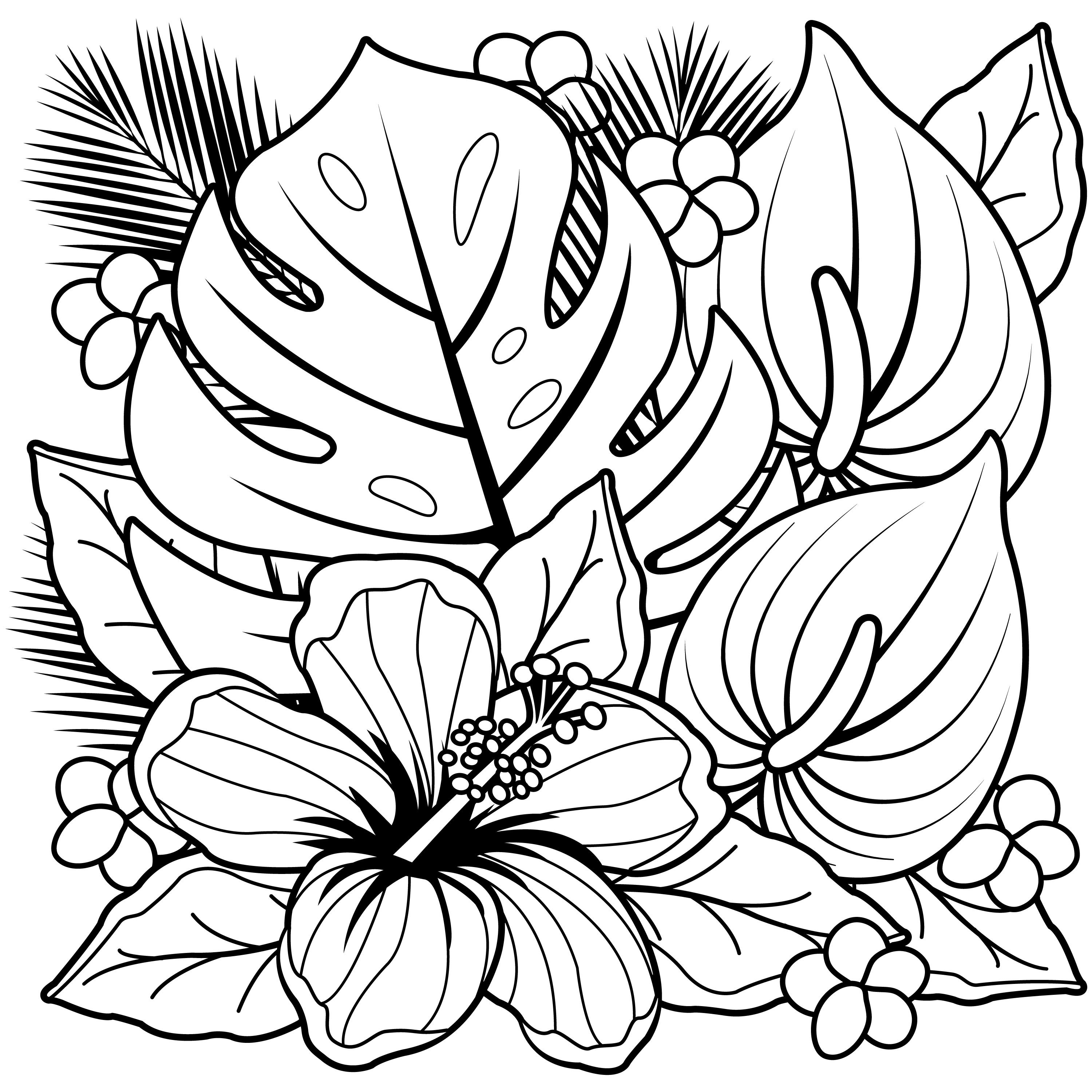 Coloring Pages Hawaiian Flowers Collection Free Sheets