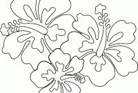 Coloring Pages Hawaiian Flowers - Lifetime Hawaiian Coloring Pages Awesome Flowe Unknown Printable