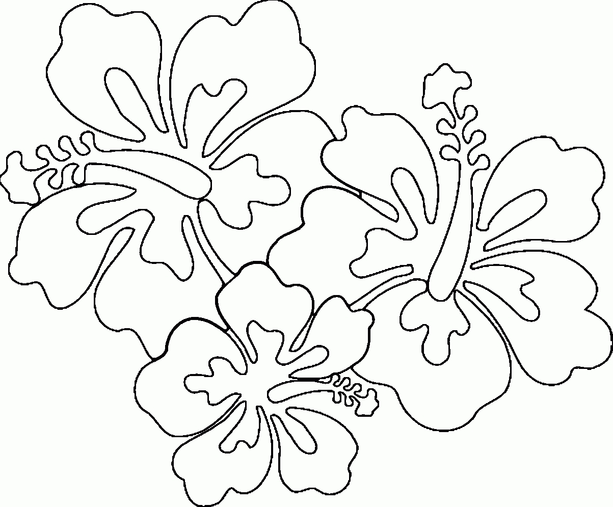 Coloring Pages Hawaiian Flowers Collection 8m - Free For kids