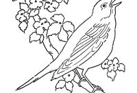 Coloring Pages Birds - Line Art Coloring Page Bird with Blossoms the Graphics Fairy to Print