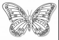 Monarch butterfly Coloring Pages - Miracle Monarch butterfly Coloring Page Free Printable Pages In 7 Collection
