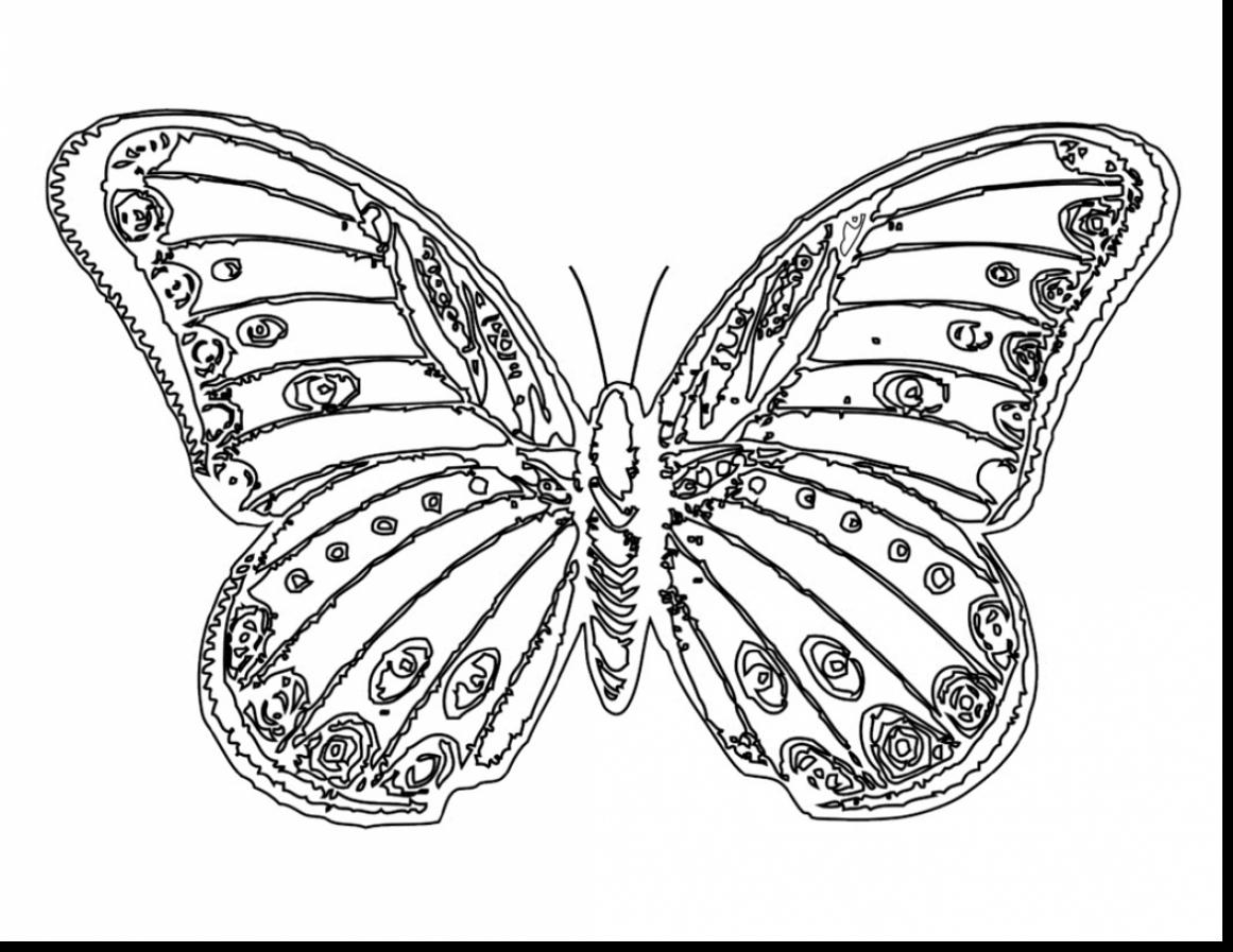 Miracle Monarch butterfly Coloring Page Free Printable Pages In 7 ...