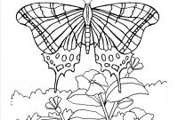 Monarch butterfly Coloring Pages - Monarch butterflies Coloring Page Monarch butterfly Download Free Download