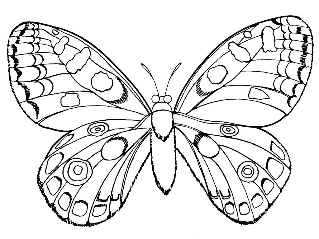Monarch butterfly Coloring Page Luxury Cartoon butterflies Many Download Of Detailed Coloring Pages for Adults Collection