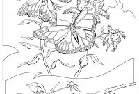 Monarch butterfly Coloring Pages - Monarch butterfly Coloring Page National Geographic Kids Coloring Gallery