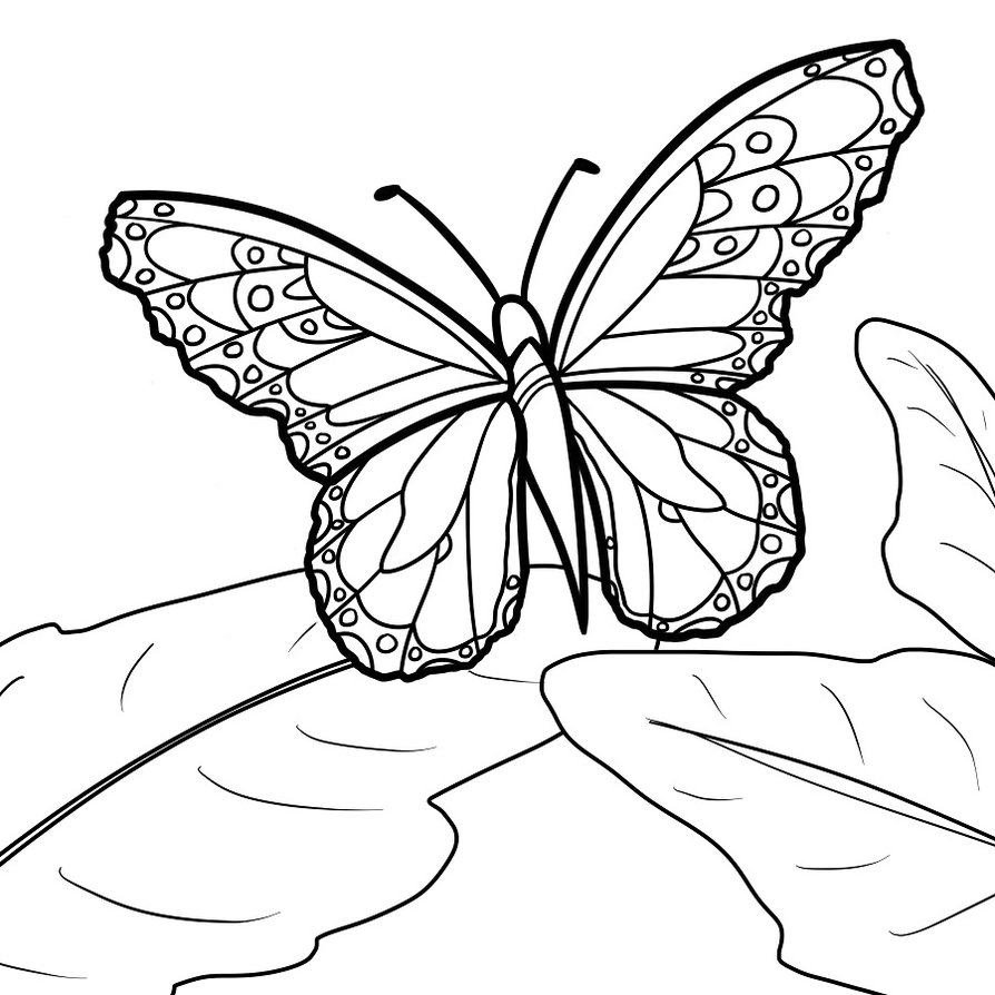 Monarch butterfly Coloring Pages and Print for Free Printable Of Detailed Coloring Pages for Adults Collection
