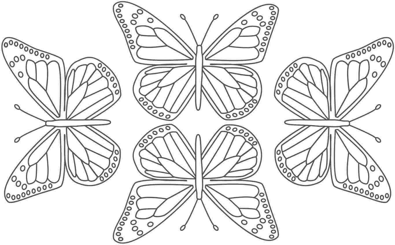 Monarch butterfly Coloring Pages to Print 11d - To print for your project