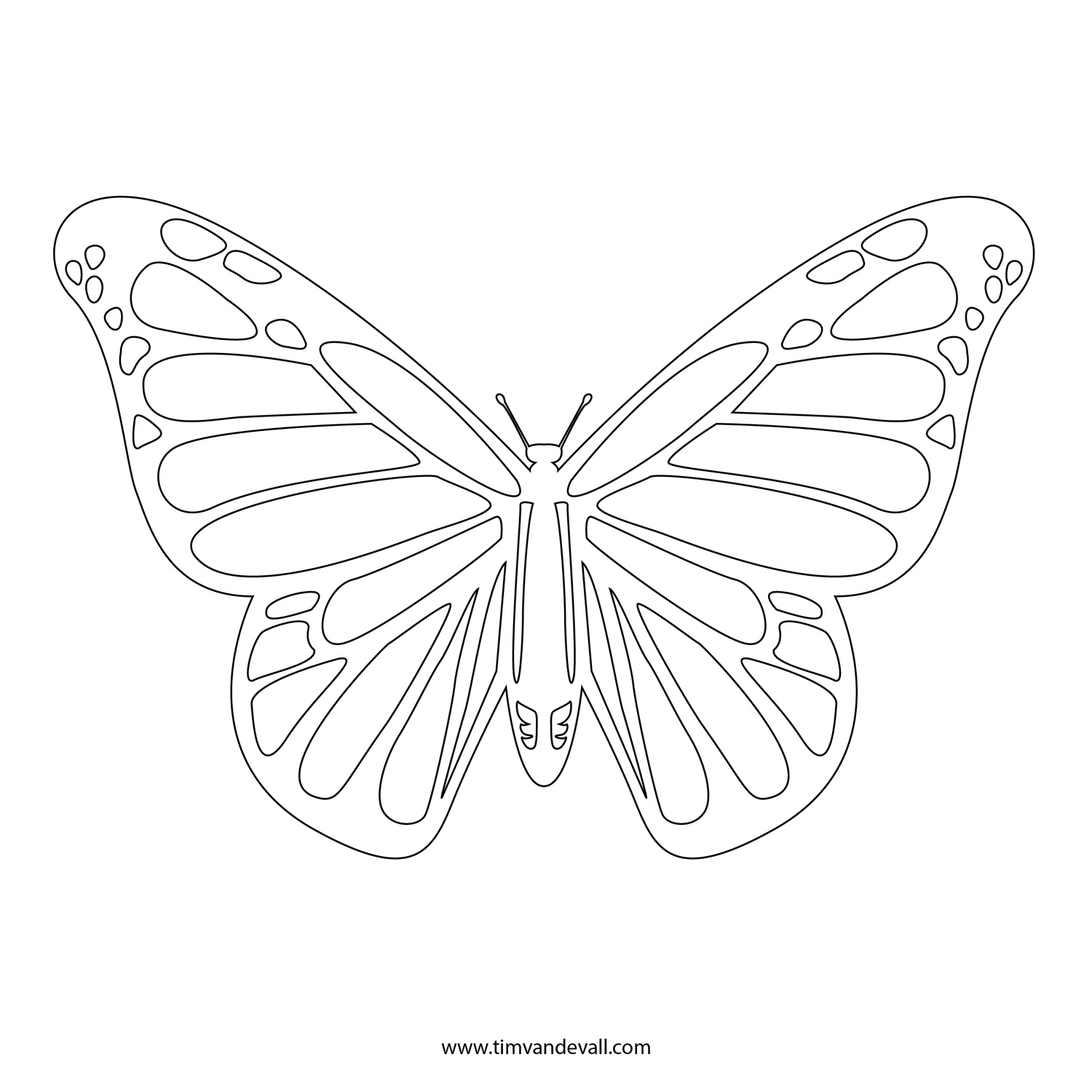 monarch butterfly line drawing monarch butterfly coloring page gallery of monarch butterfly coloring pages to print