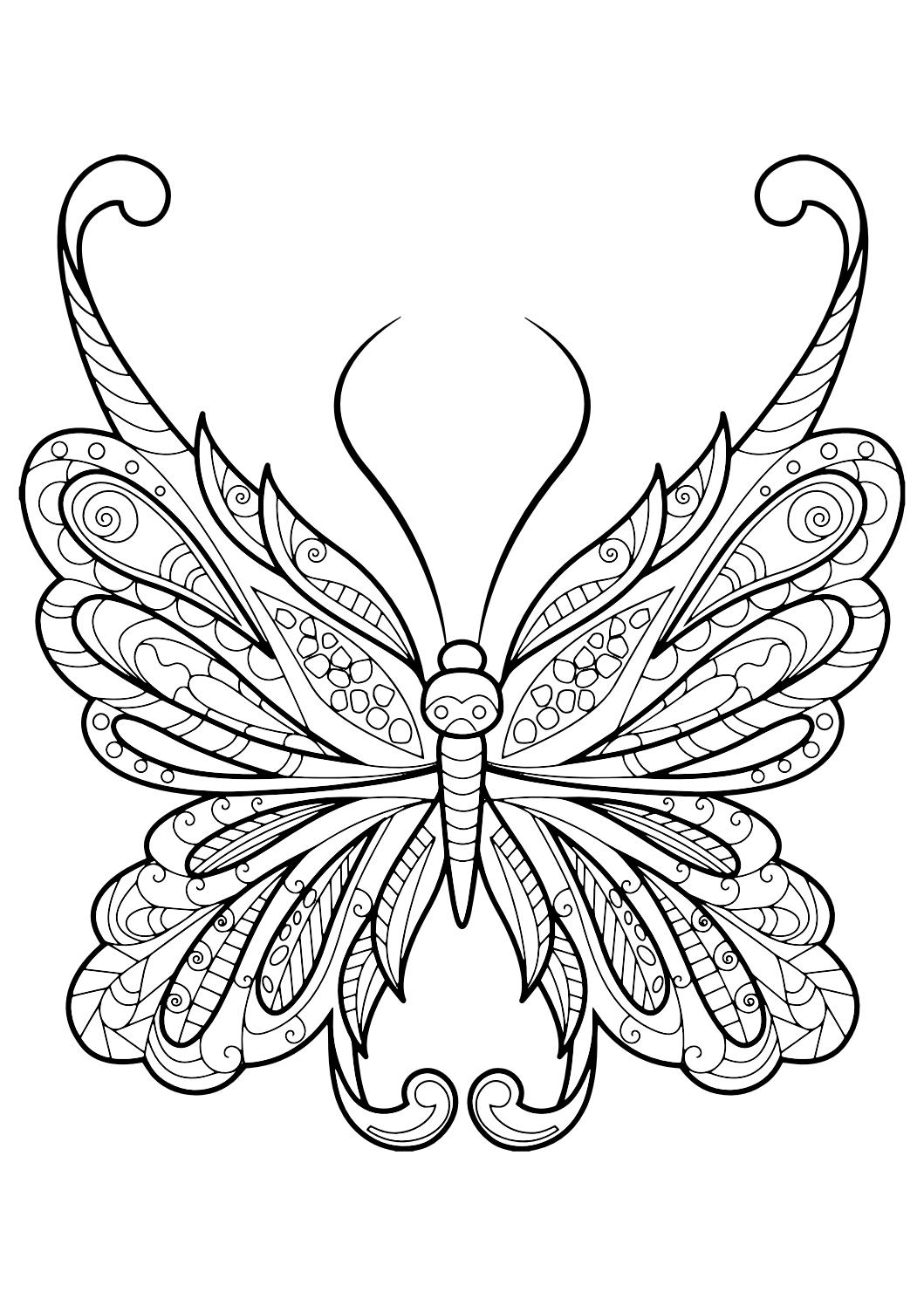 New Monarch butterfly Coloring Page Viewing Gallery for – Monarch ...