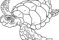 Animals Coloring Pages to Print - New Ocean Animals Coloring Pages Best Coloring 4293 Unknown Ocean Collection