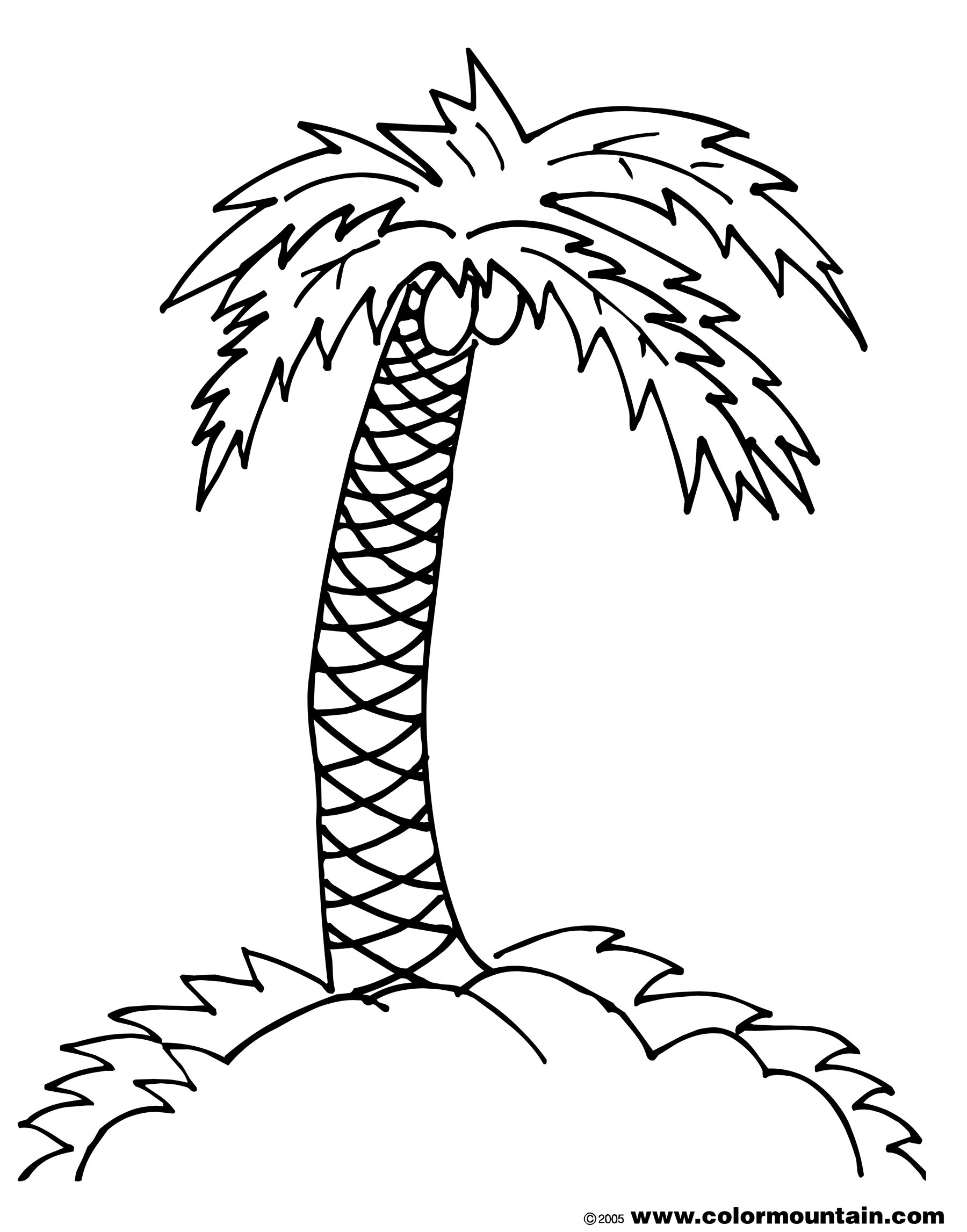 Nice Palm Tree Coloring Page Free Pages Coconuts Fresh 3129 Gallery Of Noted Coloring Picture A Tree Pages Unknown Resolutions Printable