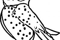 Animals Coloring Pages to Print - Nocturnal Animal Coloring Pages Printable Collection