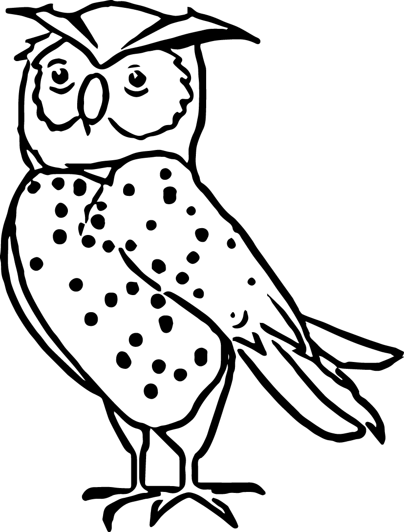 Nocturnal Animal Coloring Pages Printable Collection