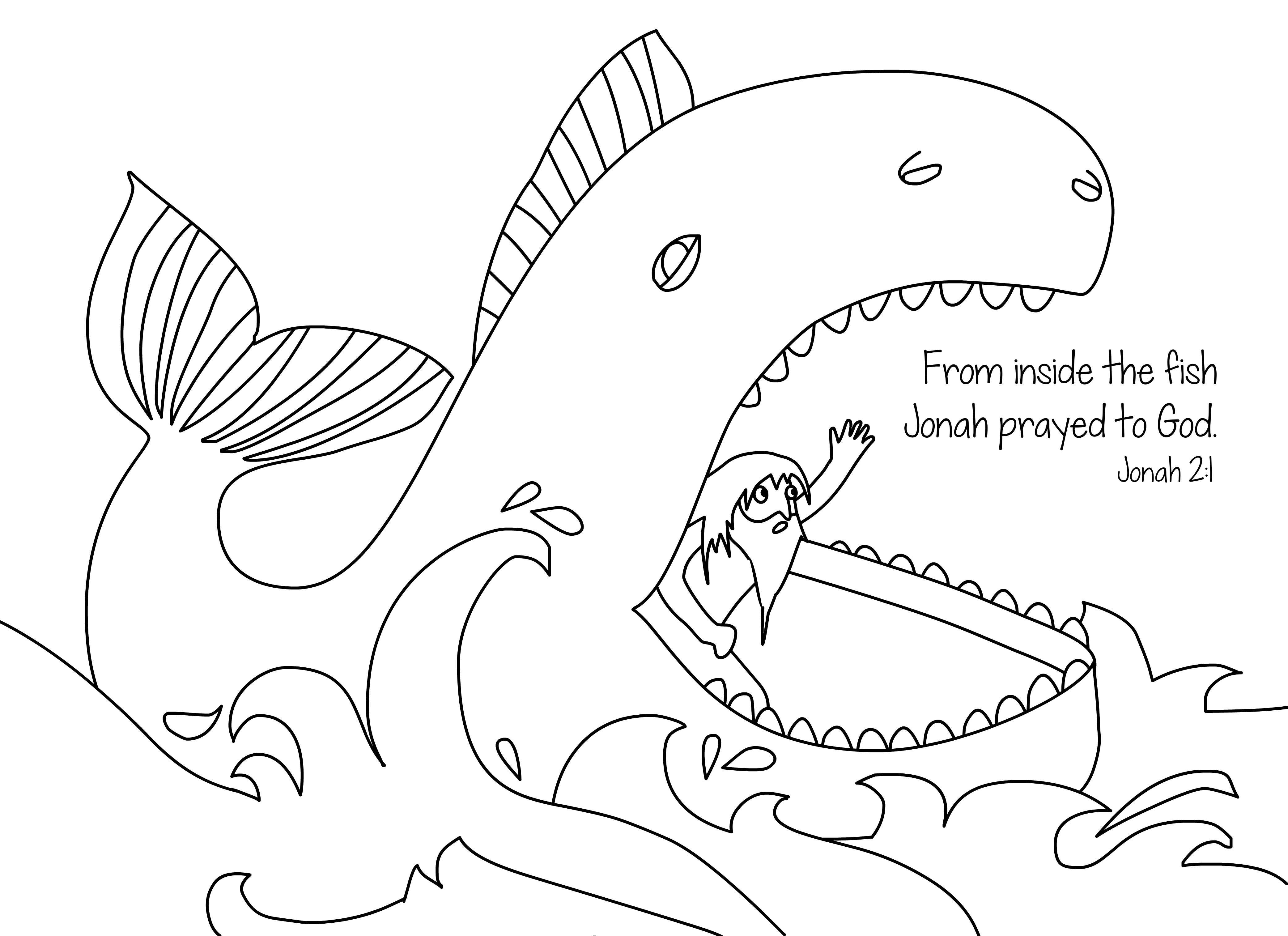 Orca Whale Coloring Pages (49 Images) - Class Teacher