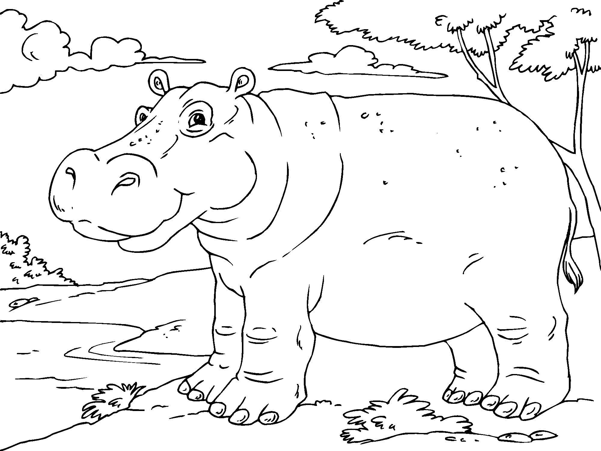 Perspective Texas Tech Coloring Pages Page to Print – Free Coloring ...