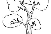 Tree Coloring Pages - Preschool Coloring Pages Trees Copy Tall Tree Trees Coloring Pages Download