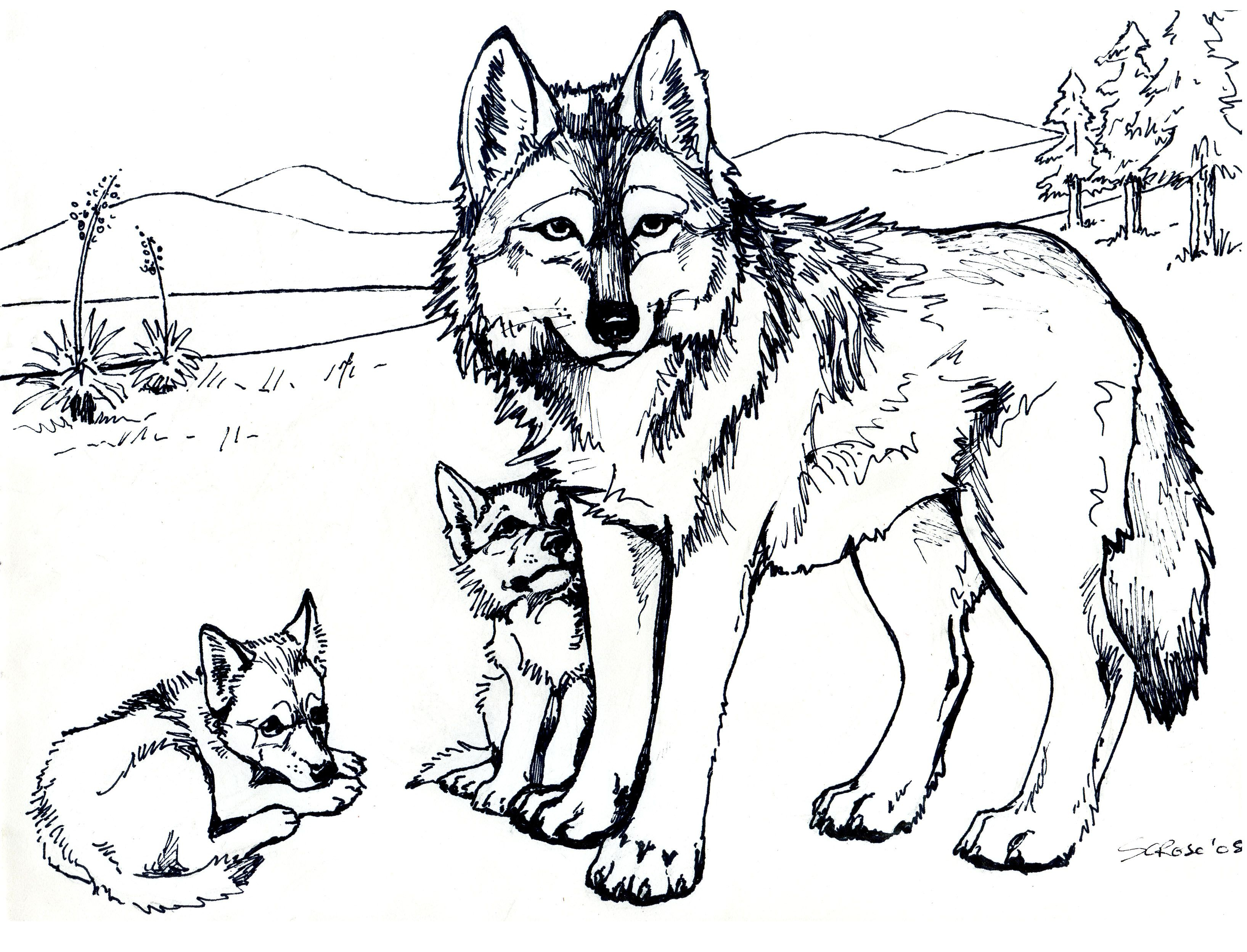 Wolf Coloring Pages Printable Printable 10m - Free For Children