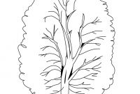 Tree Coloring Pages - Printable Tree Coloring Pages Gallery