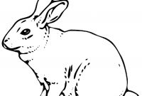Coloring Pages Of A Rabbit - Remarkable Realistic Bunny Coloring Pages Rabb Unknown Download
