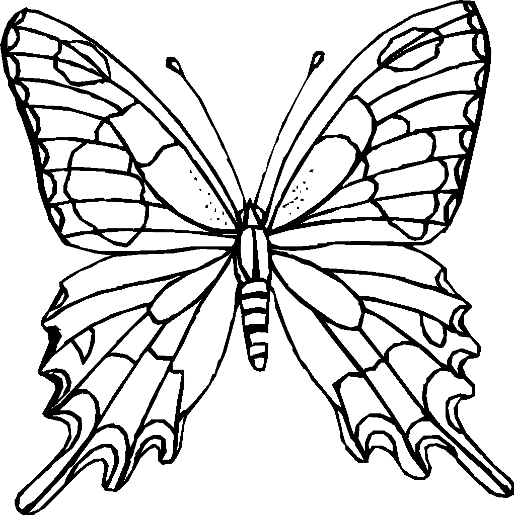 Simple Picture A butterfly to Color Drawing 9987 Unknown Collection Of Detailed Coloring Pages for Adults Collection