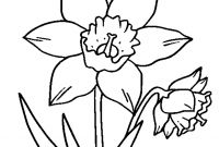 Daffodils Coloring Pages - Special Daffodil Coloring Page Fresh Design Printable Sheet Gallery