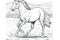 Coloring Pages Of Horses - Sturdy Coloring Page A Horse Pages Horses R 3353 Unknown Download