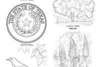 Texas Coloring Pages to Print - Texas State Symbols Coloring Page Printable