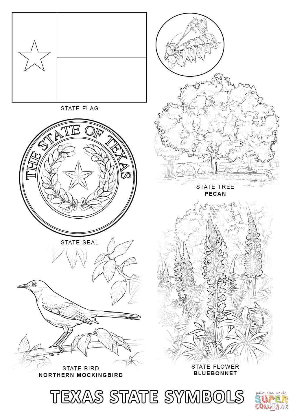 Texas State Symbols Coloring Page Printable Of Perspective Texas Tech Coloring Pages Page to Print