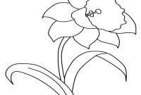 Daffodils Coloring Pages - the Yellow Daffodil Coloring Pages to View Printable Version Gallery