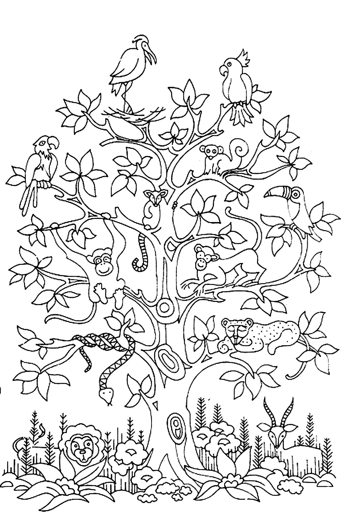 Tree Bird butterflies Snake Monkey butterflies & Insects Adult Printable Of Apple Tree Coloring Page with Coloring Pages Apple orchard Download Download
