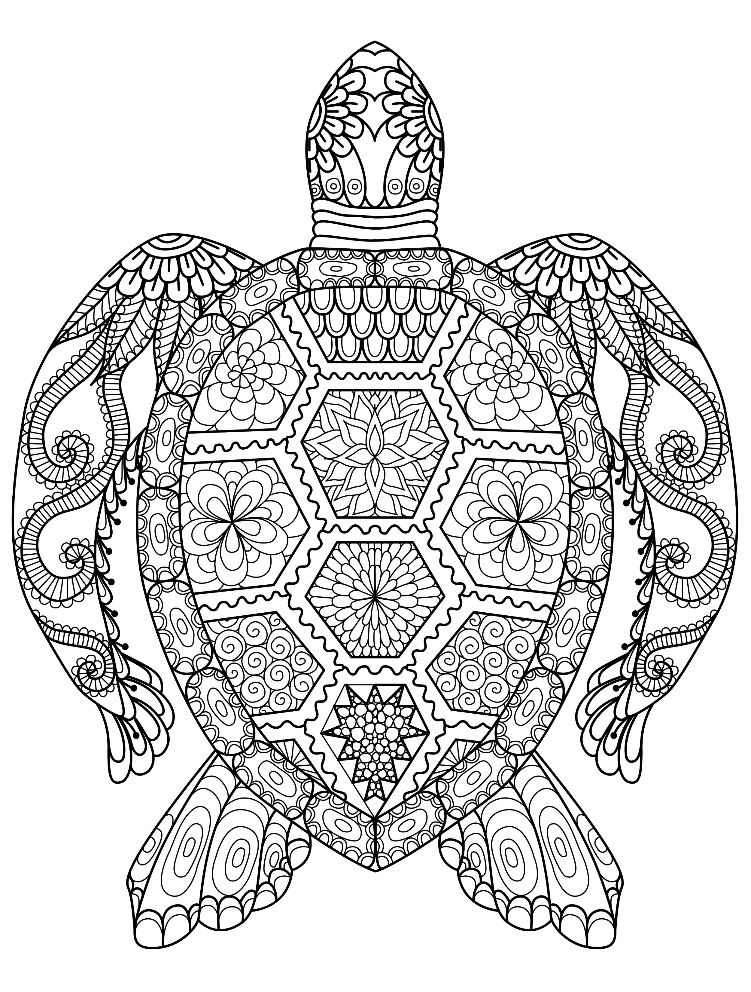Turtle Mandala Coloring Pages Printable Collection Download Of Modern Intricate Mandala Coloring Pages Coloring for Good Mandala to Print