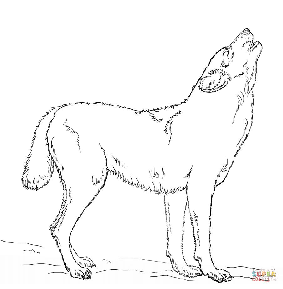 Wolf Coloring Pages Download Of Wolves Coloring Pages Wolf Coloring Pages Free Coloring Pages Collection