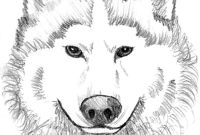 Wolf Coloring Pages Printable - Wolf Printable Coloring Pages to Print