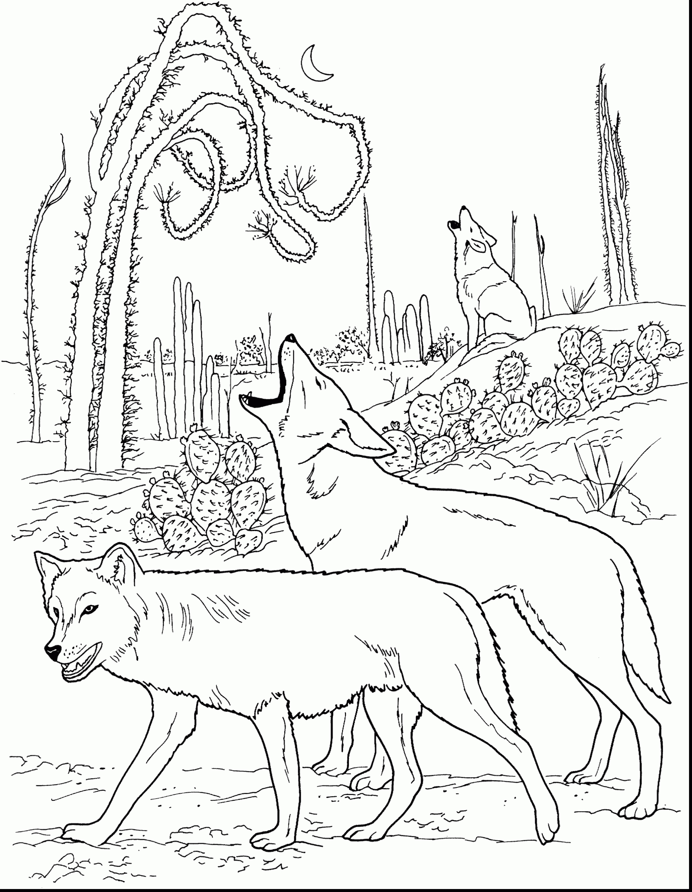Wolf Pup Coloring Pages Printable Free Coloring Books Gallery Of Wolf Coloring Pages Elegant Free Printable Wolf Coloring Pages for Download