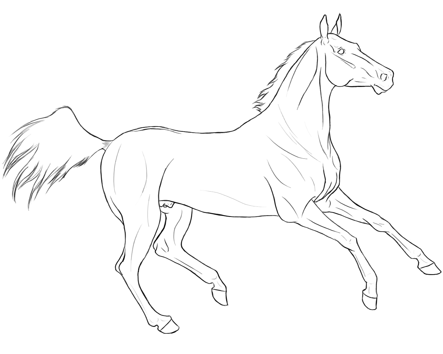 Race Horse Coloring Pages Printable
