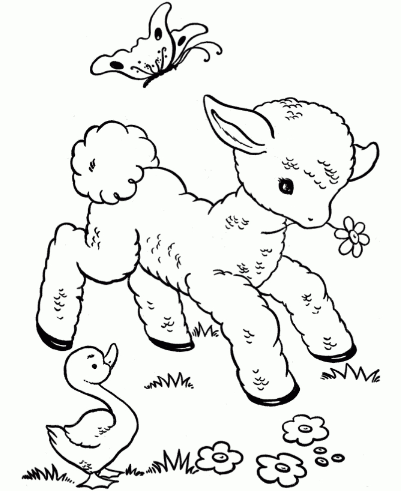 Animal Babies Coloring Pages Baby Cute Collection Of Best Cartoon Animals