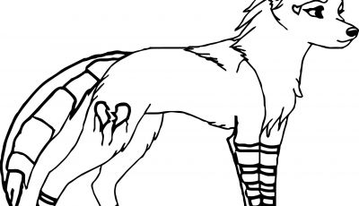 Coloring Pages Of Anime Wolves - Anime Wolf Coloring Pages 9789 Download