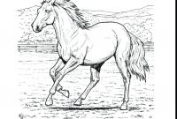 Race Horse Coloring Pages - Best Adult Coloring Pages Horse Printable Design Collection