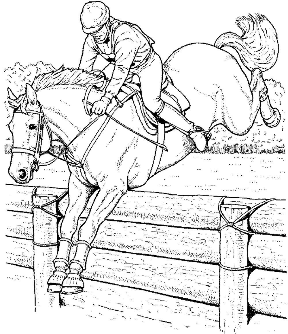 Race Horse Coloring Pages Printable 2h - To print for your project