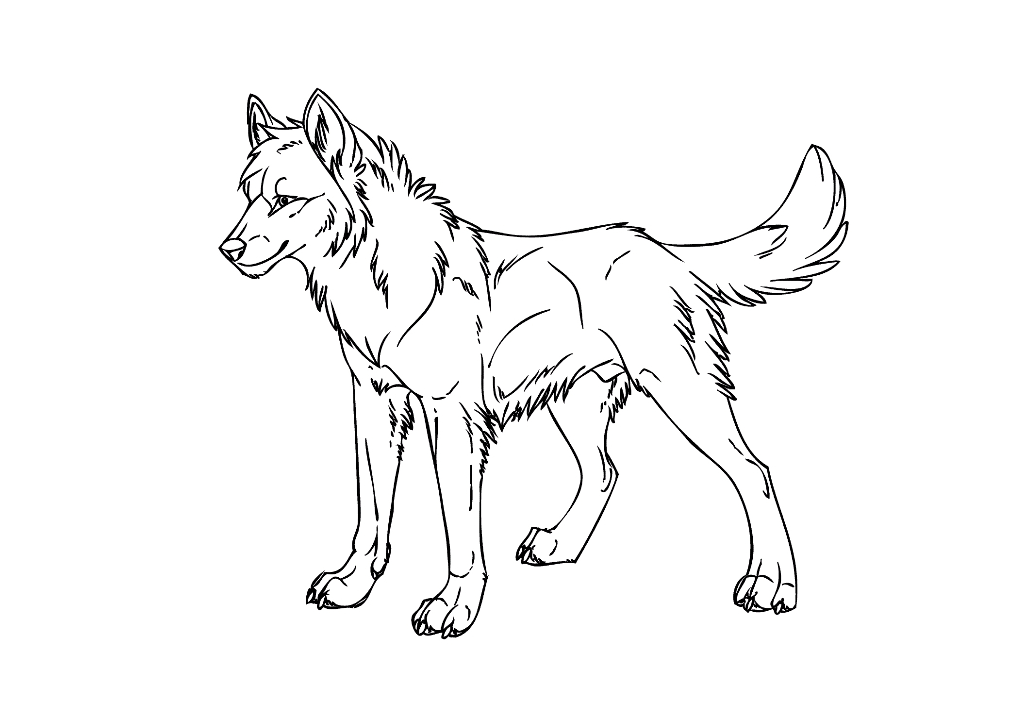 Cool Coloring Pages Anime Wolfs Wolf To Print Of