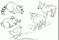 Free Baby Animal Coloring Pages - Excellent Spring Baby Animals Coloring Pages with Baby Animal Gallery