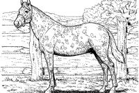 Race Horse Coloring Pages - Fresh Horse Racing Color Pages Horse Race Coloring Page Free Collection