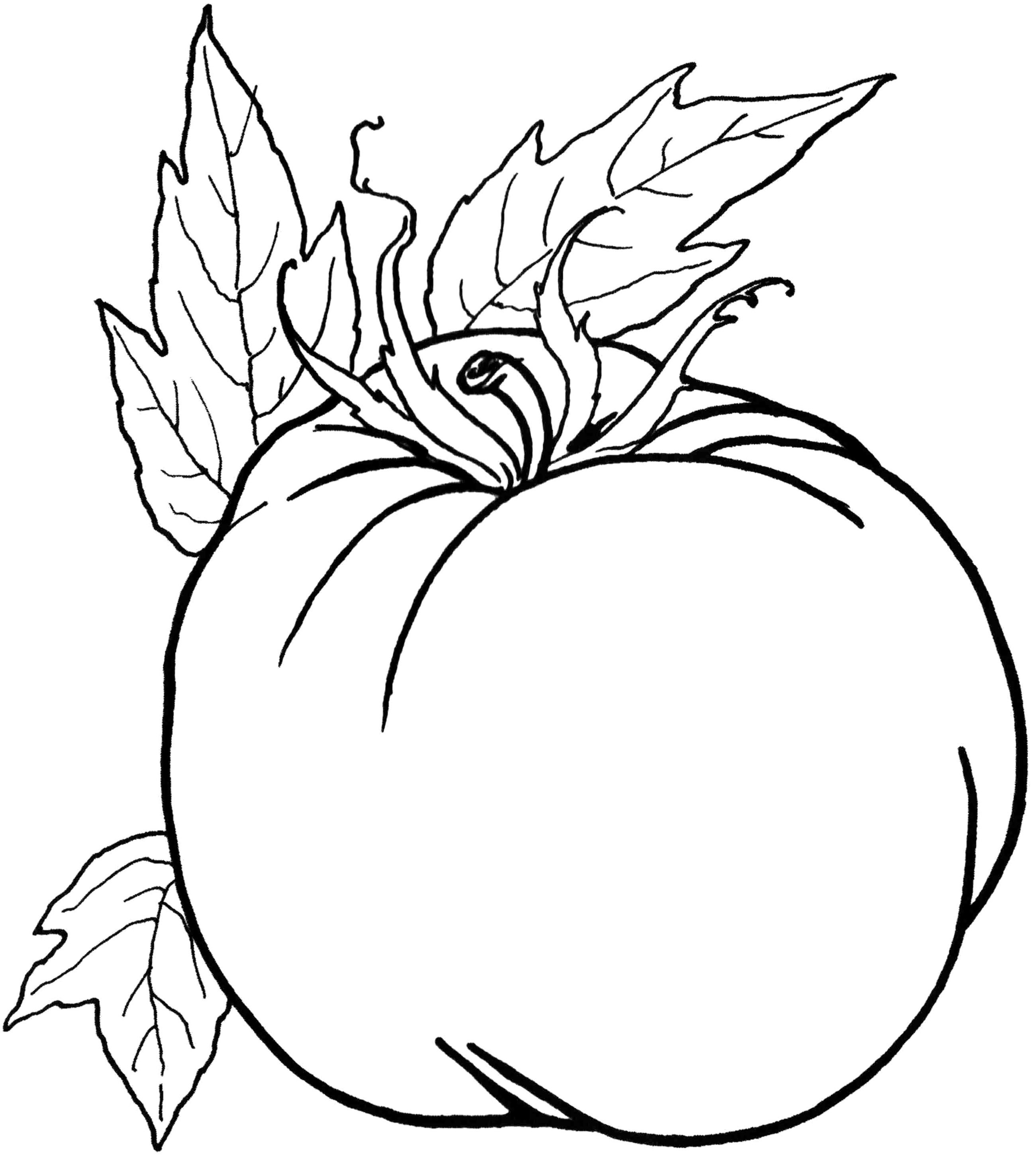 Coloring Pages Of Healthy Foods Collection 5k - Free For kids