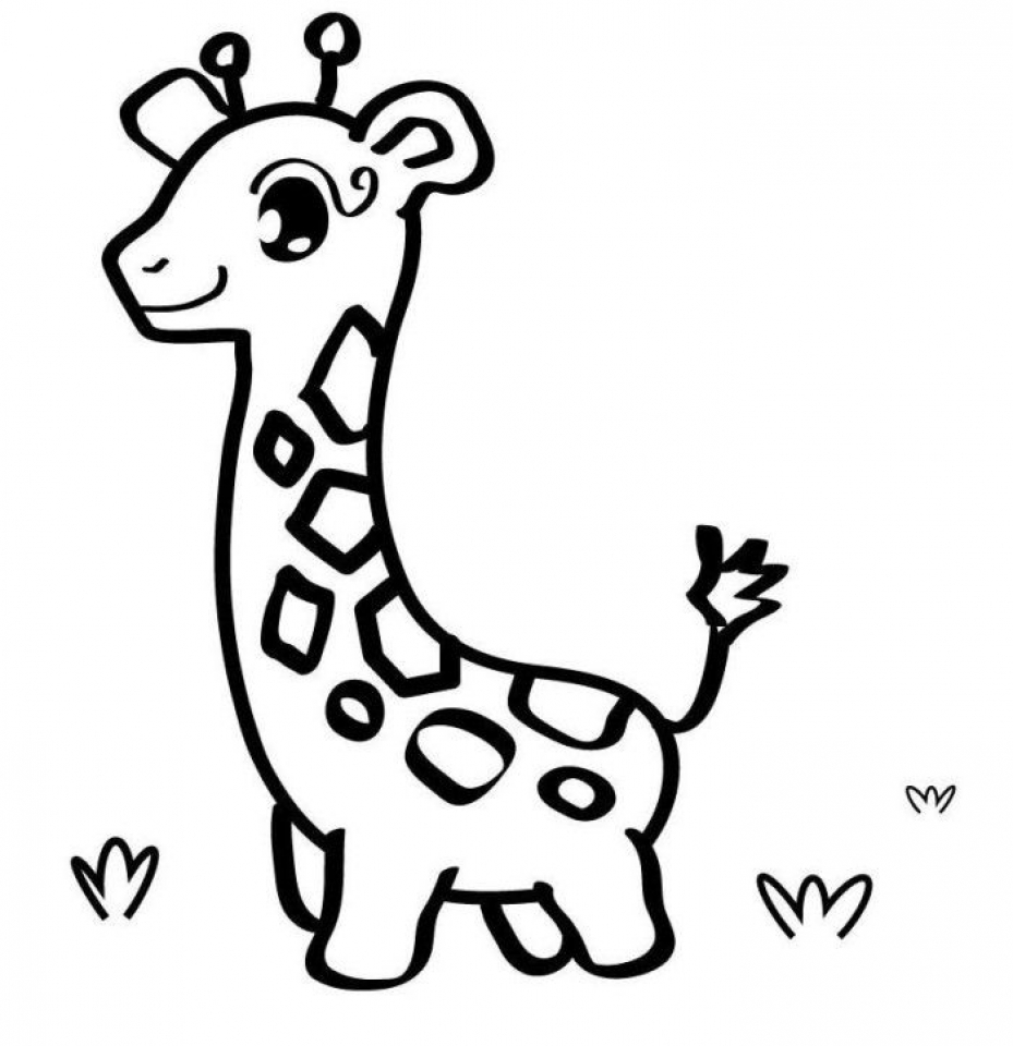Get This Baby Animal Coloring Pages Free Printable Gallery