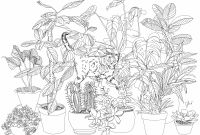 Herbs Coloring Pages - Herb Coloring Pages Democraciaejustica Collection