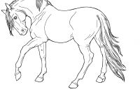 Coloring Pages that You Can Color On the Computer - Huge Gift Horse to Color and Print now that You Can St Collection