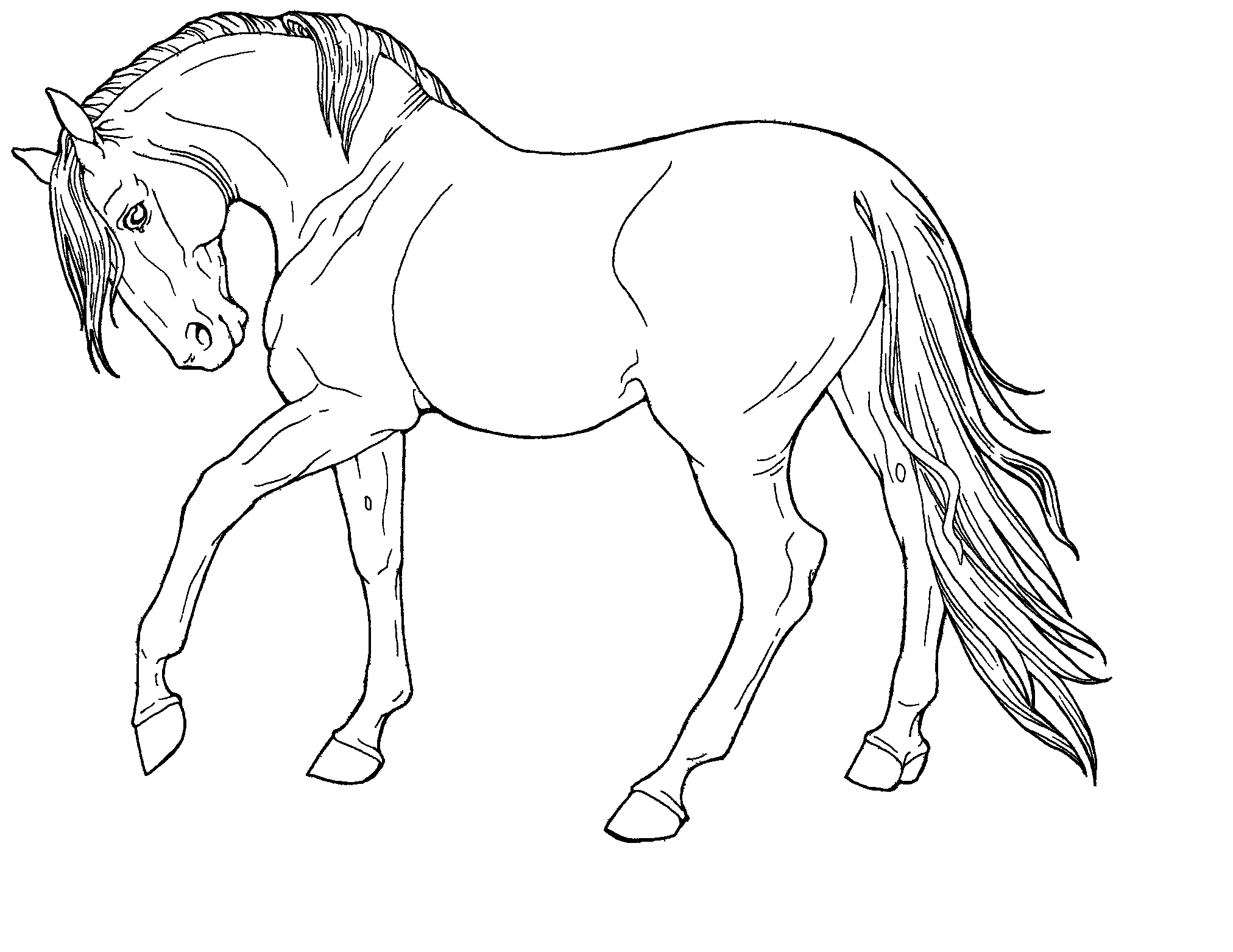 Huge Gift Horse to Color and Print now that You Can St Collection Of Printable Puter Coloring Pages Collection
